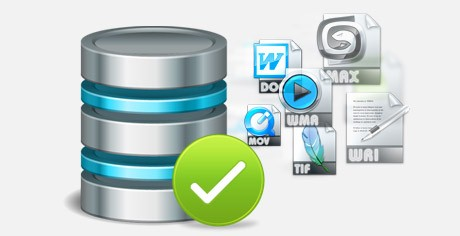 EaseUS Data Recovery Wizard Technician offers complete data recovery solution to diverse data lost cases.